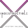 Indestructible (Robyn Cover)