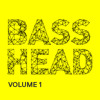 Bass Head Massive Presets Vol.1 - 50 heavy basses, leads, pads and experimental sound design
