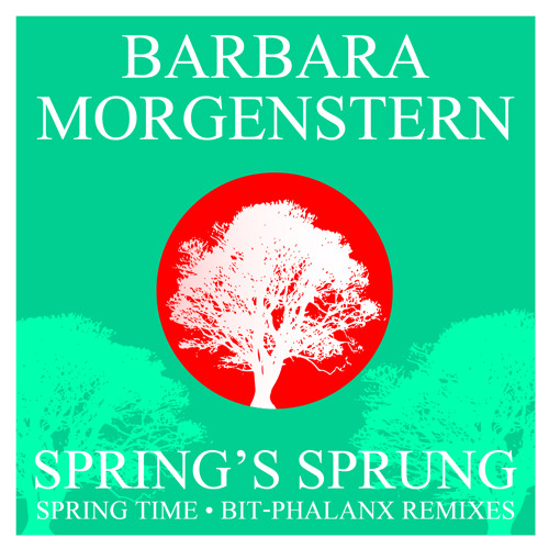 Barbara Morgenstern - 'Spring Time (The Crisis Project Remix)'