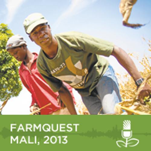 FarmQuest - Reality Radio in Mali