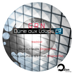 DION004 G R N - Dune aux Loups EP