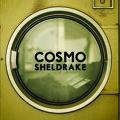 Cosmo Sheldrake The Moss Artwork