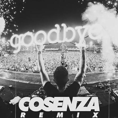 Deorro & Zoofunktion - Goodbye (Cosenza Remix)