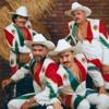 Mi Banda el Mexicano - No Bailes De Caballito ( Erick Rincon Remix ) Portada del disco