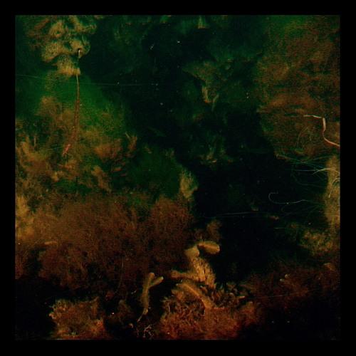 Archipelago - Hang-up