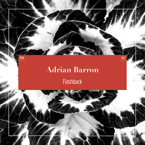Adrian Barron - Turn It Out (Original) (excerpt)