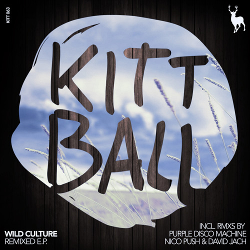2. Wild Culture - For Everything (David Jach Remix)