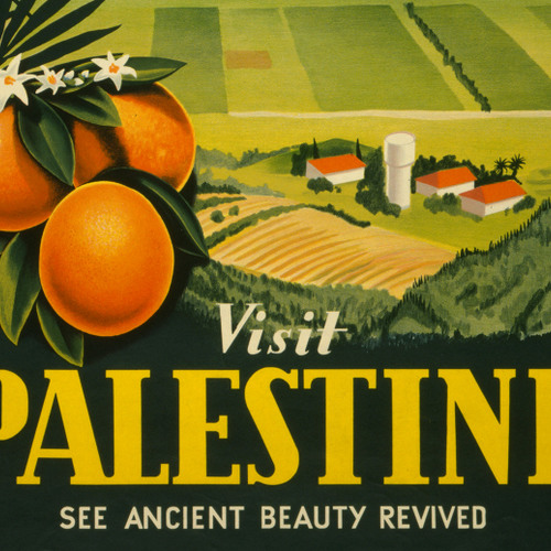 Palestine: The History of a Name | Zachary J. Foster