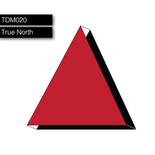 TDM020: True North Guest Mix