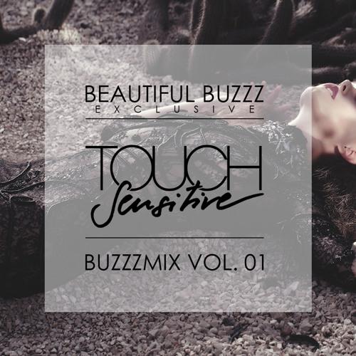 BUZZZMIX VOL. 1 - TOUCH SENSITIVE