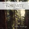 'Yosemite - Mariposa Grove Dawn' by Dan Dugan - Album sample