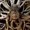 Shivatree -