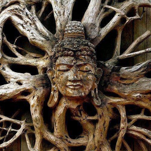 "Shivatree - ""Bring the Spring Mix"" - Promo set -Tree of Life festival!"