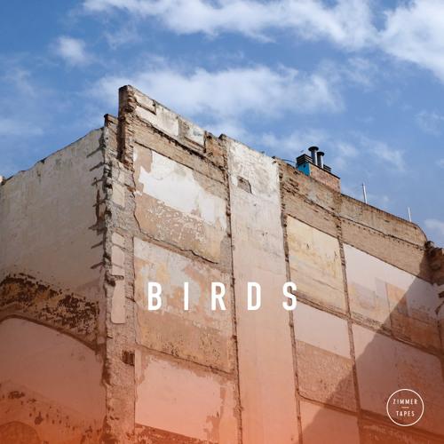 Zimmer - Birds | March Tape