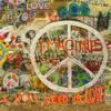 Koo & Kieran- Imagine (Jack Johnson Cover)