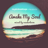 Awake My Soul (Melodic Deephouse Mix by Vanderboom)