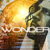 Living Streams by John Belt (The Wonder Worship Album)