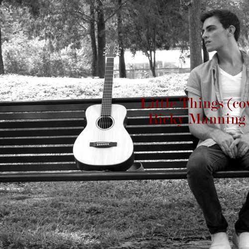 Little Things (cover)