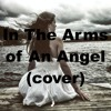 In The Arms of An Angel - (cover) Karl Zarate