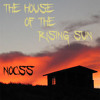 The House Of The Rising Sun (Nocss Remix)