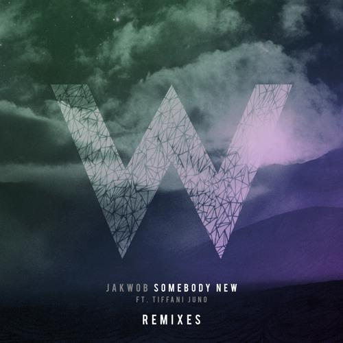 Jakwob - Somebody New Ft. Tiffani Juno (Seamus Haji Remix)