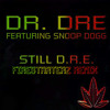Snoop Dogg Dr.Dre - Still Dre (Firestarterz Remix) INSTRUMENTAL