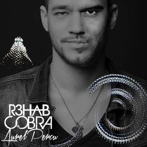 """Cobra"" R3hab [Live Percussions Edit By Aurelpercu]"