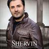 Download Shervin - Hamseda Mp3