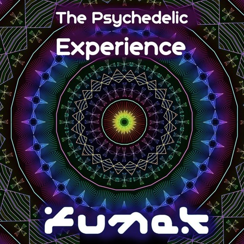 The Psychedelic Experience(Original Mix)