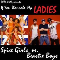 DAW-GUN - If You Wannabe My Ladies  (Beastie Boys vs. Spice Girls) audio at sowndhaus.audio