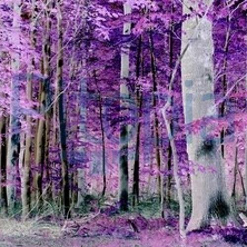 Purple Forest  Afterhour Set