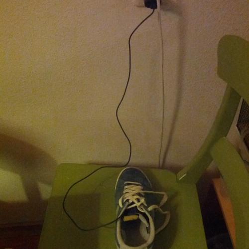 Electric Shoe