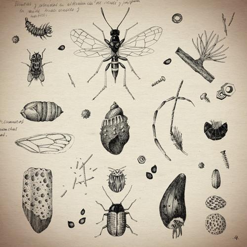 Adrian Juarez- Lluvias de polen