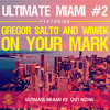 Gregor Salto and Wiwek - On Your Mark mp3