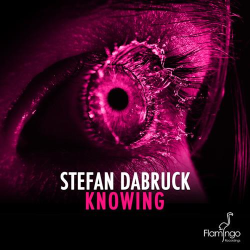 Stefan Dabruck - Knowing (Preview) [Flamingo Recordings]