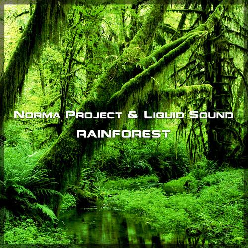 Norma Project & Liquid Sound - Rainforest (135) Preview