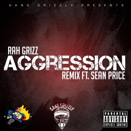 Rah Grizz Agression - ft Sean Price (Remix)