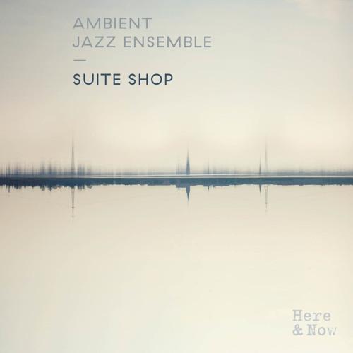 Ambient Jazz Ensemble - Vibration - edit