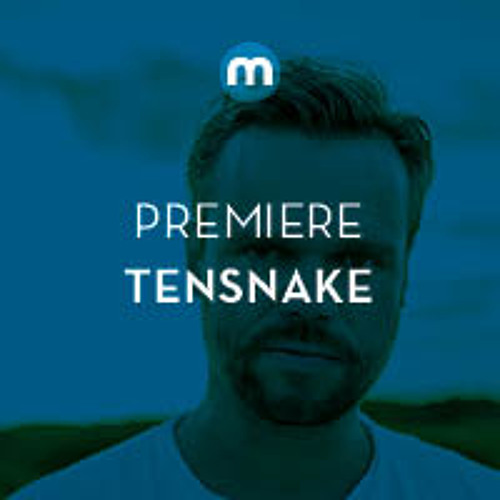 Premiere: Tensnake 'Things Left To Say'
