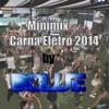 MiniMix Carna Eletro 2014