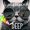 Download New Deliciously Deeeeeep Set Mp3