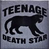 Teenage Death Star - Absolute Beginner Terrror