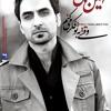 Dard-Amin Habibi(new album)