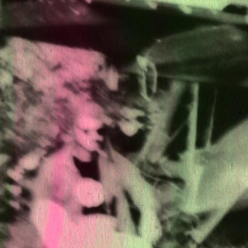 007 ŌGON BATTO C46 / Jacht Op Allen