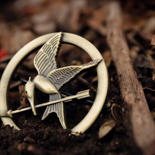 Portrait of an Intern as a Young Male Feminist: The Hunger Games & Divergent