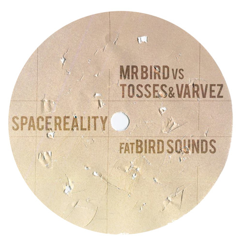 Mr Bird Vs. Tosses & Varvez - Space Reality (Mr Bird Mix)