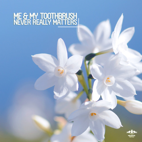 Me & My Toothbrush - Never Really Matters (Original Mix)