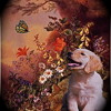 'Dog & Butterfly' Cover by Karen Klarich. Accompanied by Mark Skey/guitar