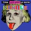 Tyga Ft. Nicki Minaj & Lil Wayne - Senile (Instrumental)
