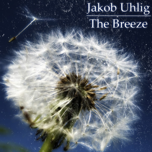 J. Uhlig - The Breeze (Cüpe D'etat Remix)